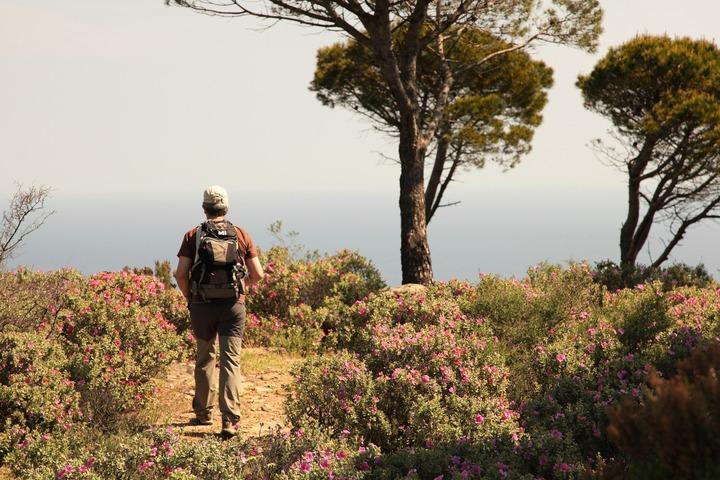 Marcher dans un jardin méditerranéen