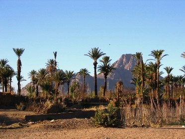 L'Algérie et ses régions de trek