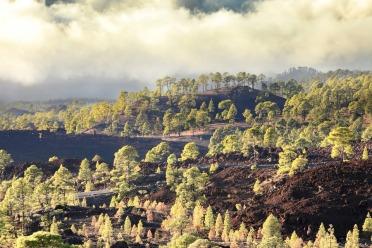 Ascension du Teide