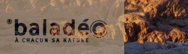 Développement Durable chez Balladeo