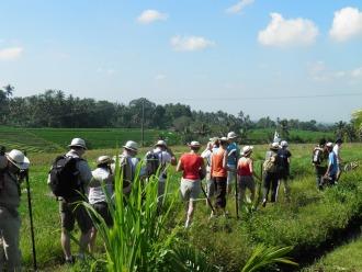 ecotourisme dans l'ouest de Bali