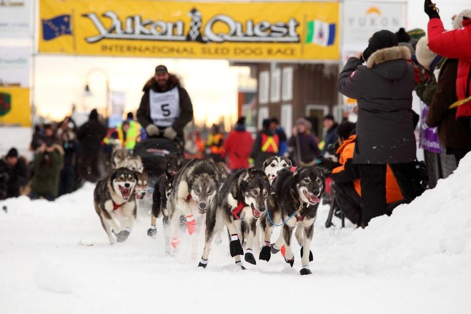 J'ai participé à la Yukon Quest