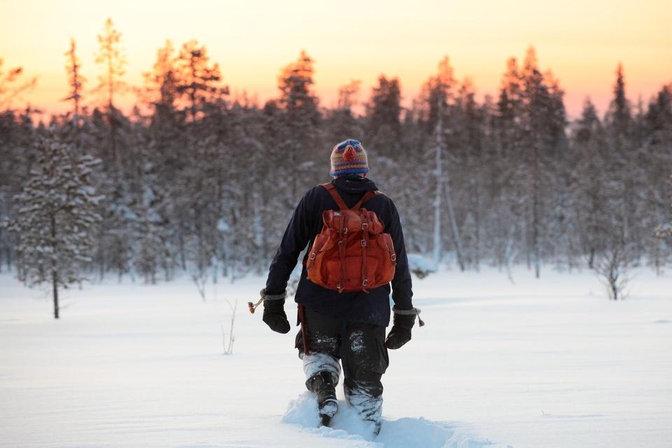 La Laponie en hiver