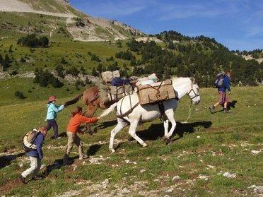 La randonnée à mule