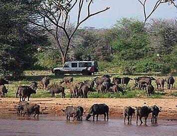 Lac Turkana et peuplades du Rift