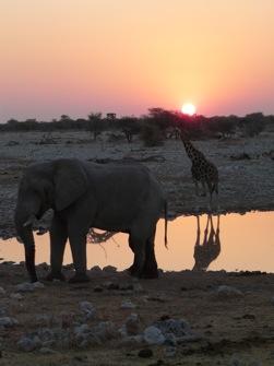 LE TOUR DE NAMIBIE 21J
