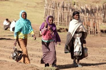 Les hauts plateaux d'Ethiopie