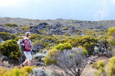 L'île de la Réunion, première visite