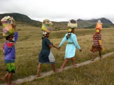 Madagascar : Un monde à découvrir