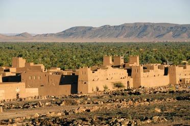 Méharée en Palmeraies au Maroc