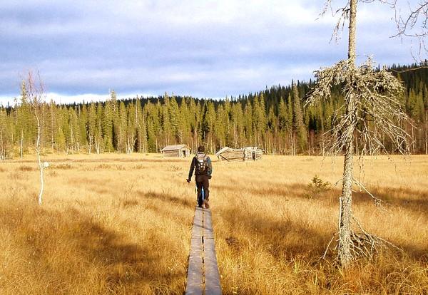 Parc National de Riisitunturi
