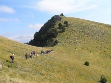 Pays Diois, une vallée, des hommes et des savoir faire