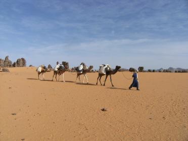 randonnée dans Sahara