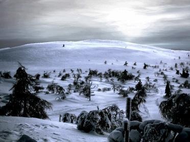 Randonnée Raquettes en Finlande