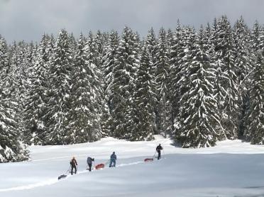 Ski de randonnée nordique en video