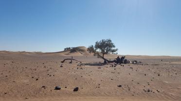 Trek dans la vallée du Drâa