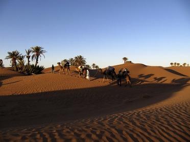 Trekking desert marocain