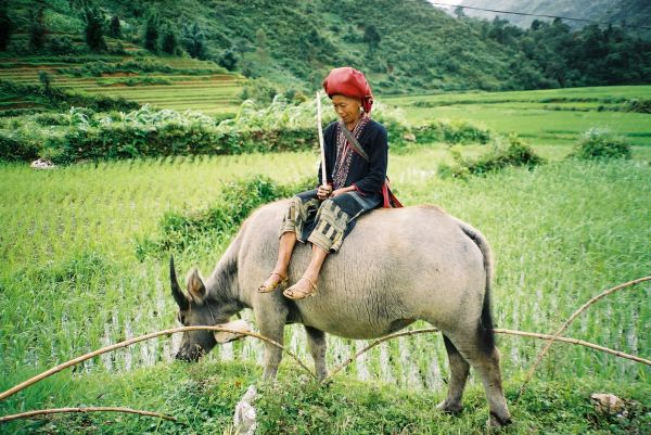rencontres du vietnam
