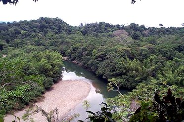 Voyage entre forêt et montagne équatorienne